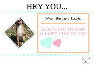 When life gets tough....hold onto my paw and don't give up, ok?