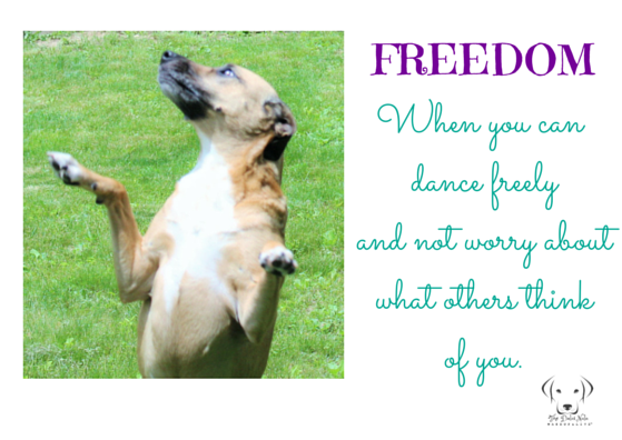 Worry Less. Dance More. Freedom.