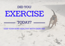 What will you do today for your physical health?