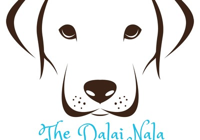 The Dalai Nala™ - That's one wise dog!