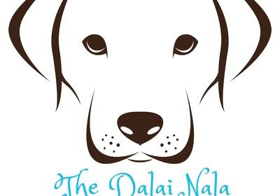 The Dalai Nala™ - That's one wise dog!