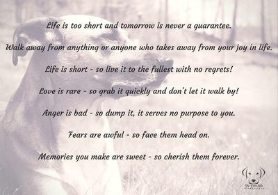 Life is too short - The Dalai Nala™