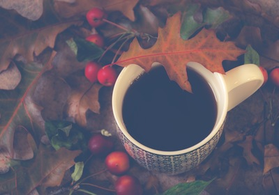 Seasonal Support Blend